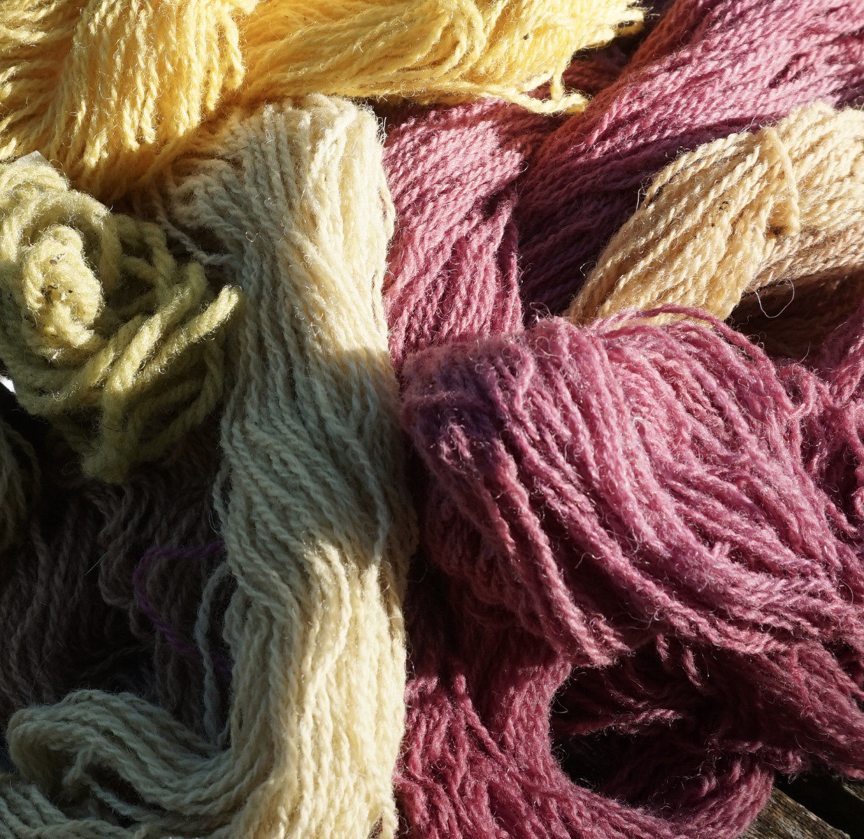 Natural dye workshops 2019 1